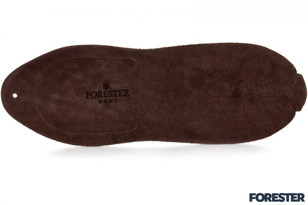 Forester Home 4172-3